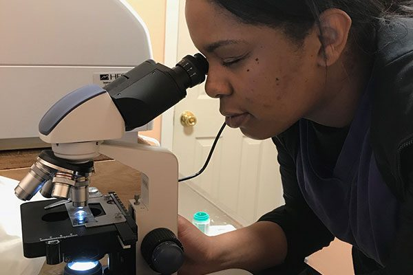 A team member looking through a microscope
